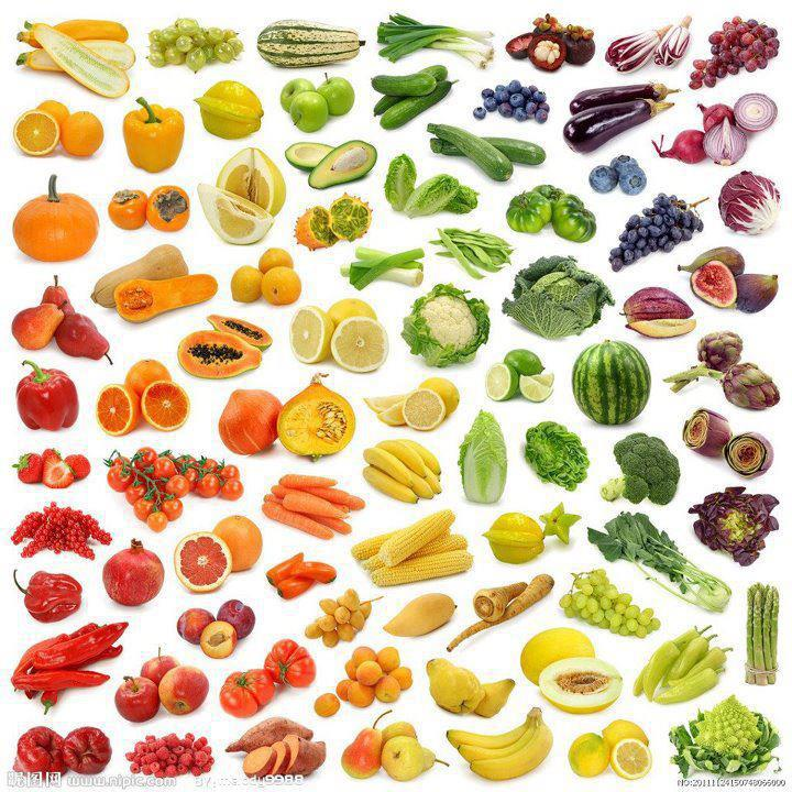 rainbow of vegitation